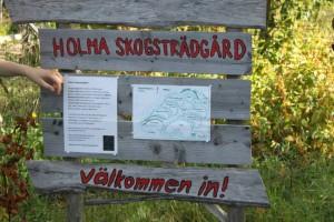 Hoor-skogstradgarden (3)