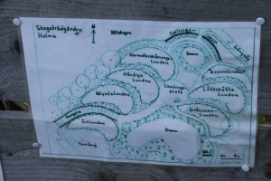 Hoor-skogstradgarden (5)